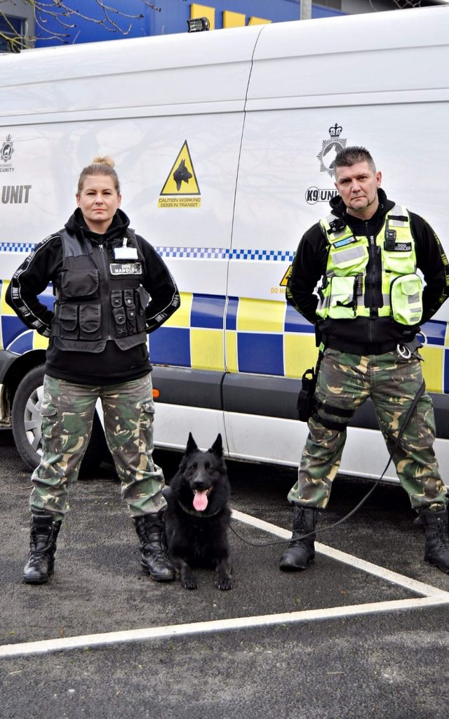 Guard dogs 24/7 security benefits
