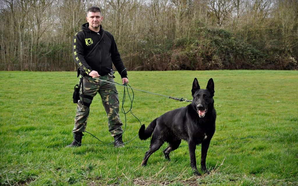 security guard with dogs milton keynes