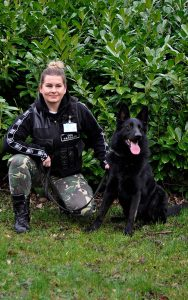 Protection with a dog